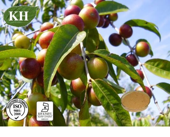 Natural Camu Camu Extract Vitamin C 20% HPLC pictures & photos