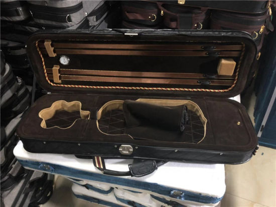 High Grade Professional Violin Hard Case for Sale