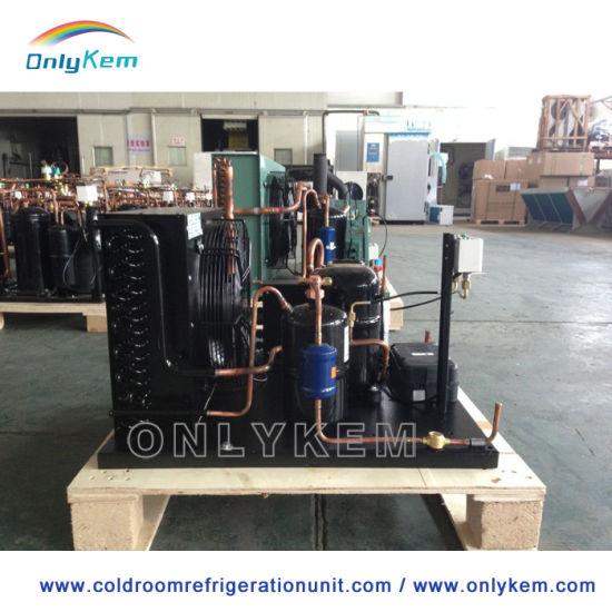 China Original Bitzer/Copeland Refrigeration Unit for Cold