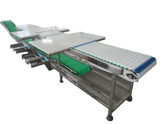 380V/220V Qingdao Sheep Meat Galvanizing Slaughter Equipment Apply Conveying Processing