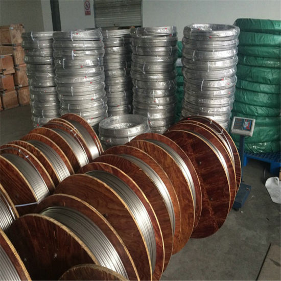 Sh Brand Alloy 825 Stainless Steel Coil Tubes with Good Price