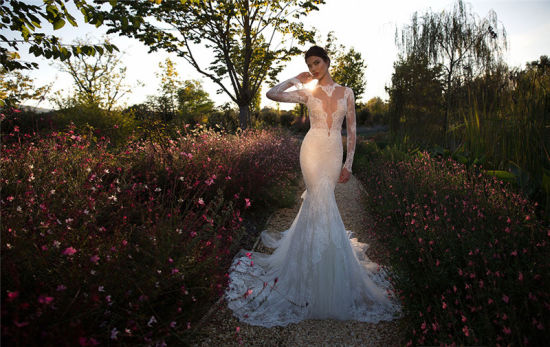2017 Stunning Long Sleeves Mermaid Lace Wedding Dress (Dream-100004) pictures & photos