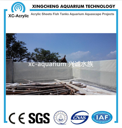 Customized Acrylic Glass Wall Swimming Pool Project pictures & photos