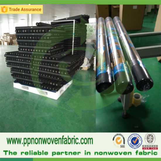 Non Woven Fabric for Agriculture Cover pictures & photos