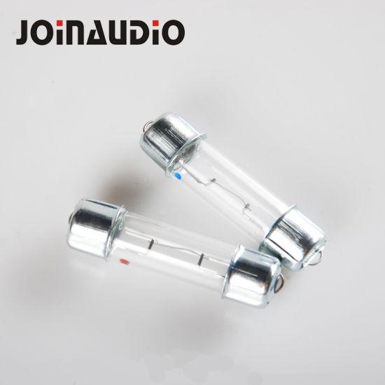 Speaker Crossover Tweeter Protector Lamp Fast Acting Cartridge Ceramic Glass Tube Fuse