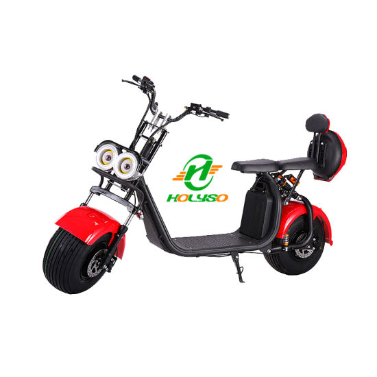 EEC&Coc Authentication Adult Two Wheel 2000W Halley Electric Scooter
