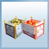 Vegetable Fruit PP Hollow Sheet Packing Box Bags & Cases