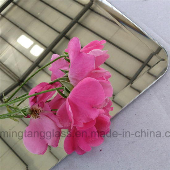 Bulk Order Price Decorative Mirrors for Home Decoration pictures & photos