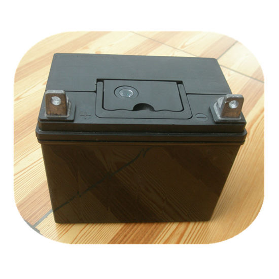 U19 Maintenance Free Lead Acid Lawn Mower Battery 12V 24ah pictures & photos
