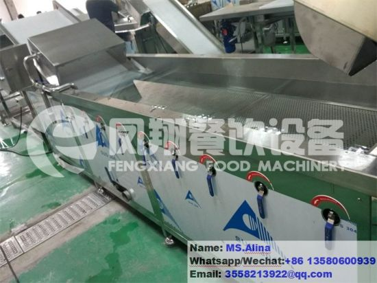 2017 Wa-2000 Automatic Bubble Ozone Vegetable Washing Machine Ozone French Fries Washer pictures & photos