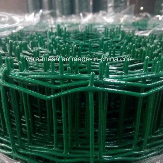 PVC Coated Welded Holland Wire Mesh Fence/ Euro Fence pictures & photos