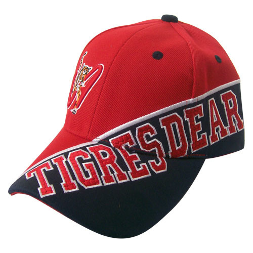 Customized Baseball Cap with Nice Logo Bb227 pictures & photos