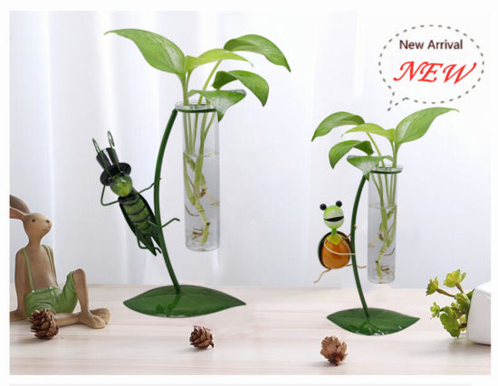 Hanging Wall Planters Flower Vase Hand Art Clear Transparent Glass