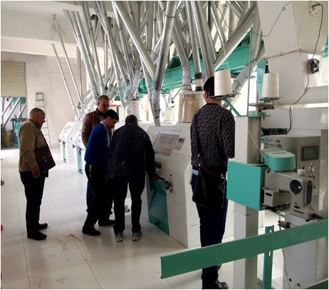 800kg Wheat Milling Machine/Flour Mill