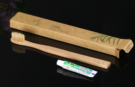 2 in 1 Dental Kit with Bamboo Toothbrush
