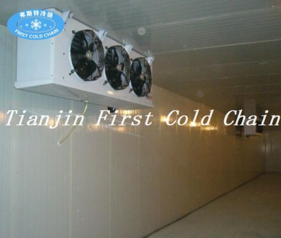 Multipurpose Cold Room (Fruits/Vegetable/Sea food) for Made in China pictures & photos