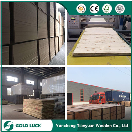 Excellent Grade Phenolic Concrete Panels Waterproof Plywood 8X4 pictures & photos