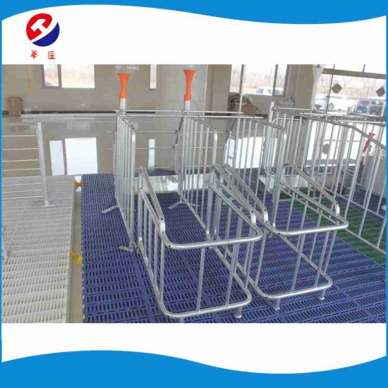 High Quality Free Access Gestation Pen Animal Cage Wholesale for Sale