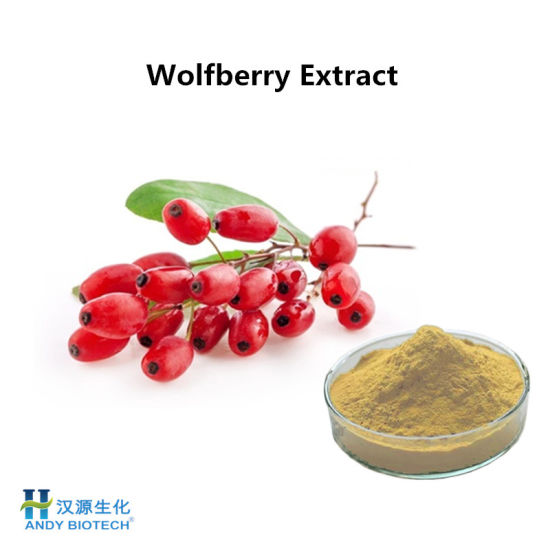 High Quality Goji Berry (Wolfberry) Juice Powder From China