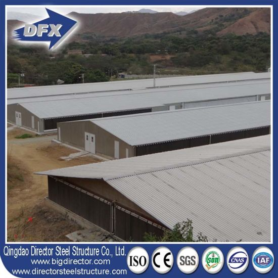 Steel Frame Fabricated Bird Poultry Broiler Farm Shed Building pictures & photos