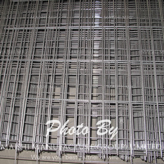 25mm Hot Dipped Galvanized Welded Wire Mesh pictures & photos