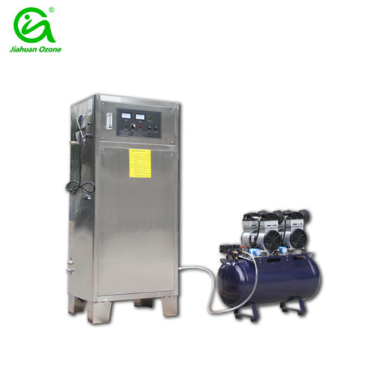 Ce Approve 100g Swimming Pool Ozone Generator for Water Cleaning