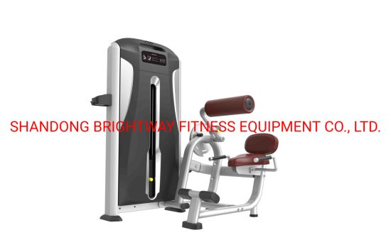 Weight Loss Machine/New Products/Fitness Equipment/Back Extension Tp11