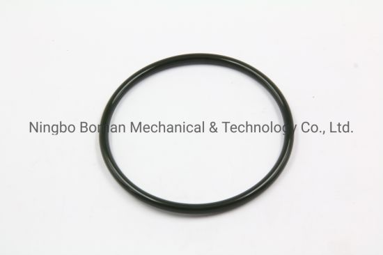 NBR/EPDM/Nitrile Rubber O-Ring/Viton O Ring