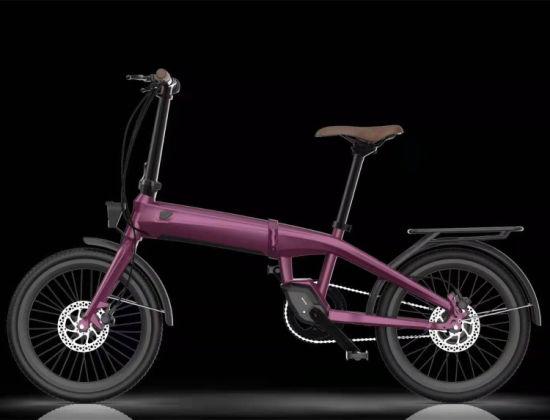 Folding E Bike/Foldable Electric Bicycle 36V Motor Life Electric Bike Folding