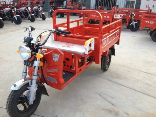 110cc China MotorizedGasolineAdult Cargo Auto Rickshaw for Sale (SY110ZH-D)