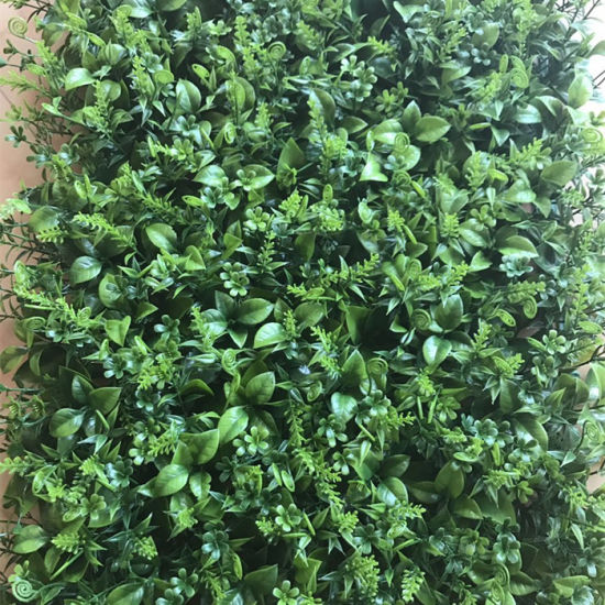 China Cheap Green Wall Vertical Garden Artificial Plant