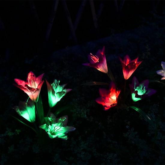 Outdoor Solar Garden Stake Lights
