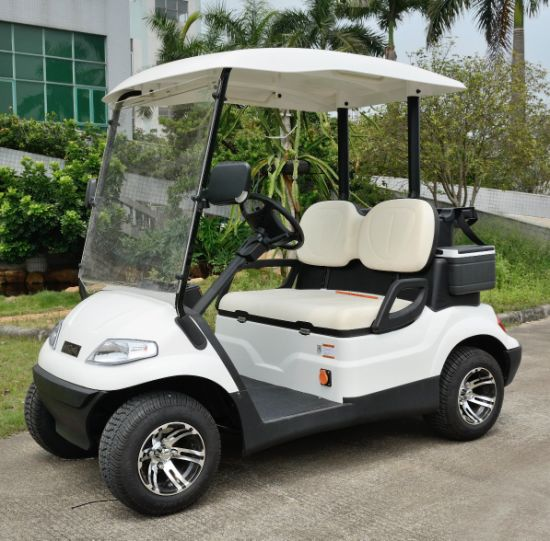 Supply 2 Seats Golf Car pictures & photos
