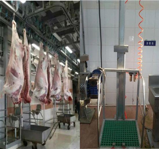 Goat Abattoir Equipment V-Type Convey Machine for Sheep Slaughterhouse Machinery