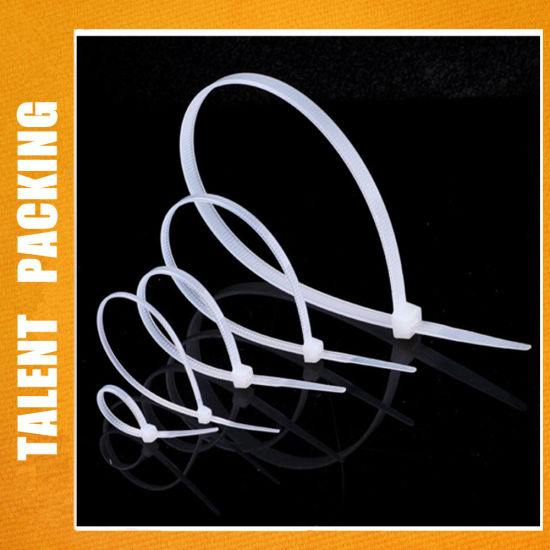 10 Inch Nylon Plastic Cable Tie with 100 PCS Pack