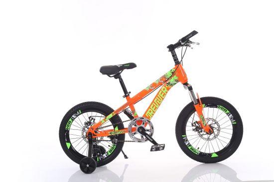 China Single Speed MTB Kids Bike with Disc Brake Wts107 - China Kid ...