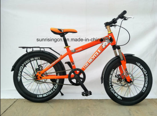 2018 Hot Sales Bicycle/Children Bicycle/Kids Bike 20 Inch with Disc Brake Sr-Kb139