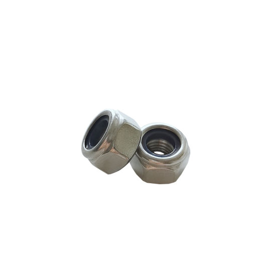 Hex Nylon Lock Nut with White Ring More Than 10 Years Produce Expricence Factory