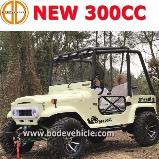 Longer Style 300cc Go Kart/300cc UTV/High Configuration 2 Seats Willys (MC-433) pictures & photos
