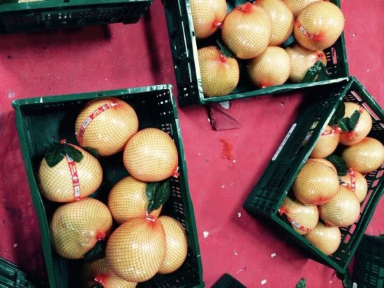 Pomelo/Fresh Pomelo/2016 Crop with High Quality pictures & photos