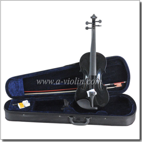 Acoustic Student Violin Outfit for Beginners (VG001) pictures & photos