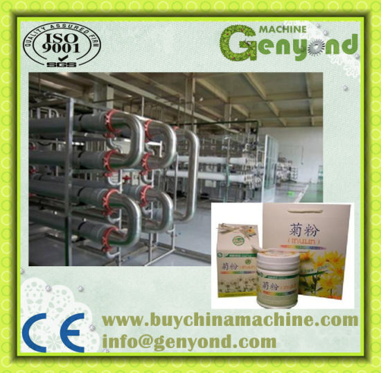 Complete Onion Powder Processing Plant pictures & photos
