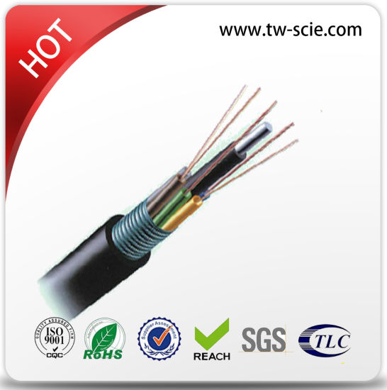 Competitive Prices 48 Core 96 Core Duct Fiber Optic Cable (GYTS) pictures & photos