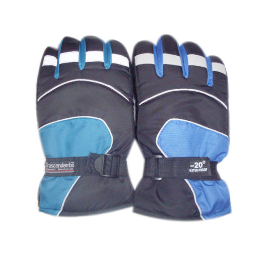 Custom Wholesale Windproof Snow Winter Leather Insulation Black Ski Glove pictures & photos