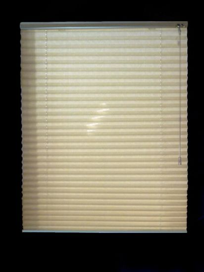Fabric Pleated Shades Blinds Blackout with Manual Control Window Blind