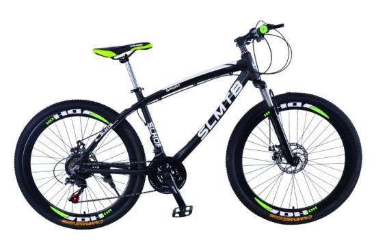 2019 Hot Suspension Fork Disc Brake Bicycle Mountain Bike (SL-MTB-010)