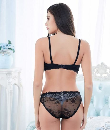 4a9b925877030 Elegant Ladies Lace Sexy Sheer Bra Panty Set Transparent Underwear Set