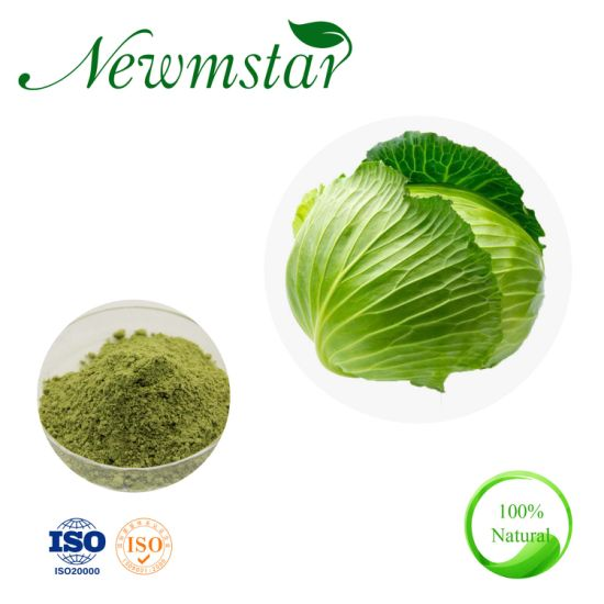 Cabbage Extract/Cabbage P. E. /Brassica Oleracea Extract Supplierfob Reference Price
