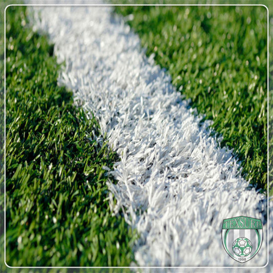 Durable Monofilament Waterproof Rugby Artificial Synthetic Grass pictures & photos