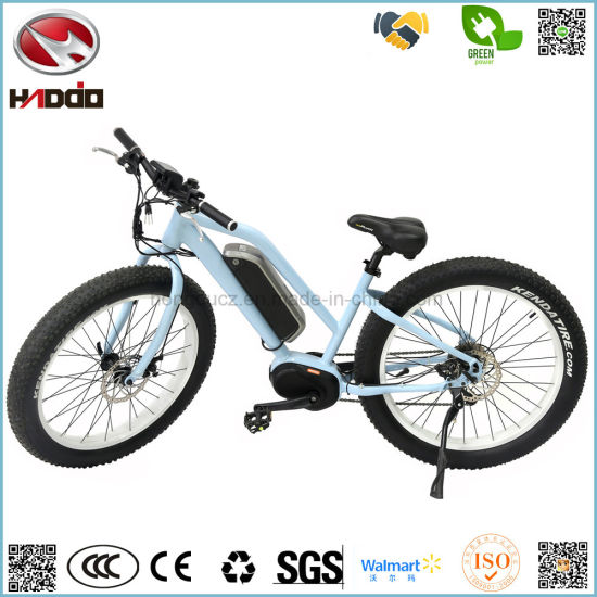 250W 26 Inch Fat Tire Electric Mountain E-Bike MID Motor Disk Brake Lithium Battery Bicycle